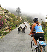 Spain biking photo
